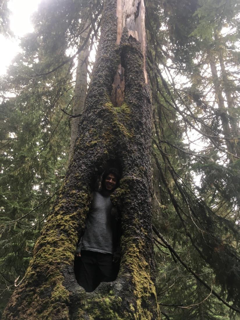 Kendall Katwalk, Pacific Northwest